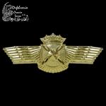 Escudo aviación